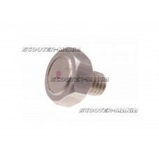 brake disc magnetic screw Koso M6x1.0x12.6