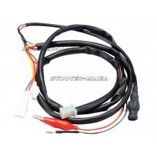 CABLES ECU Yamaha X-City, X-Max 125 4V Euro3 08-09