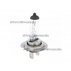 head lamp bulb halogen H7 PX26d 12V 55W