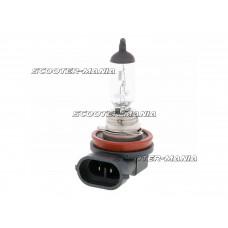 head lamp bulb halogen H11 PGJ19-2 12V 55W
